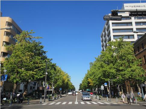 【写真】【サイズ調整】【モザイク加工】日本大通り.png